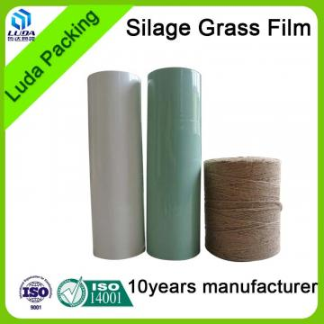 green width silage bales